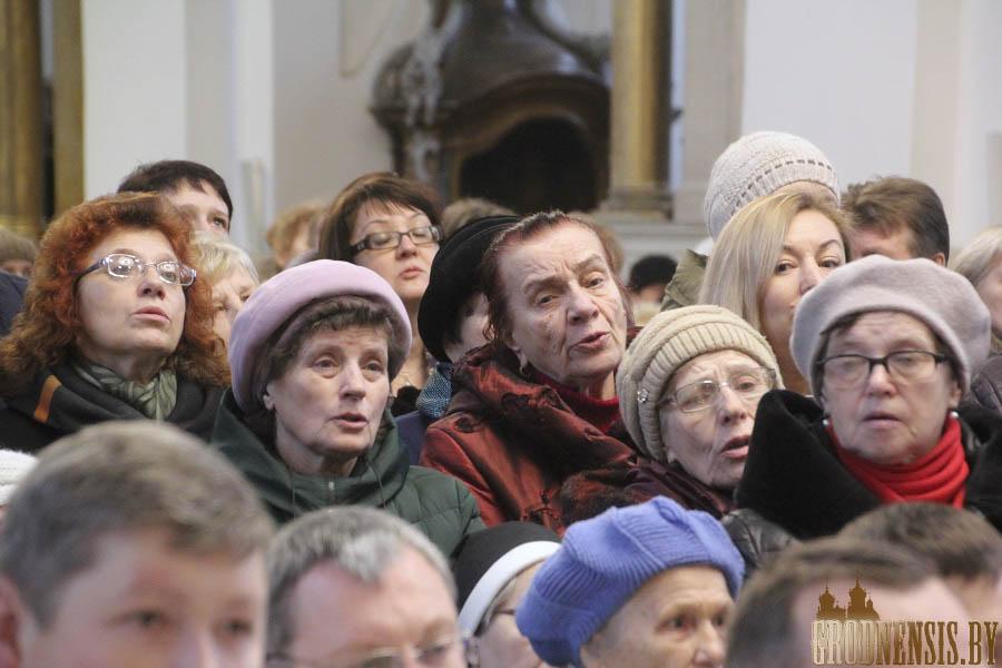 imsza sinod 9